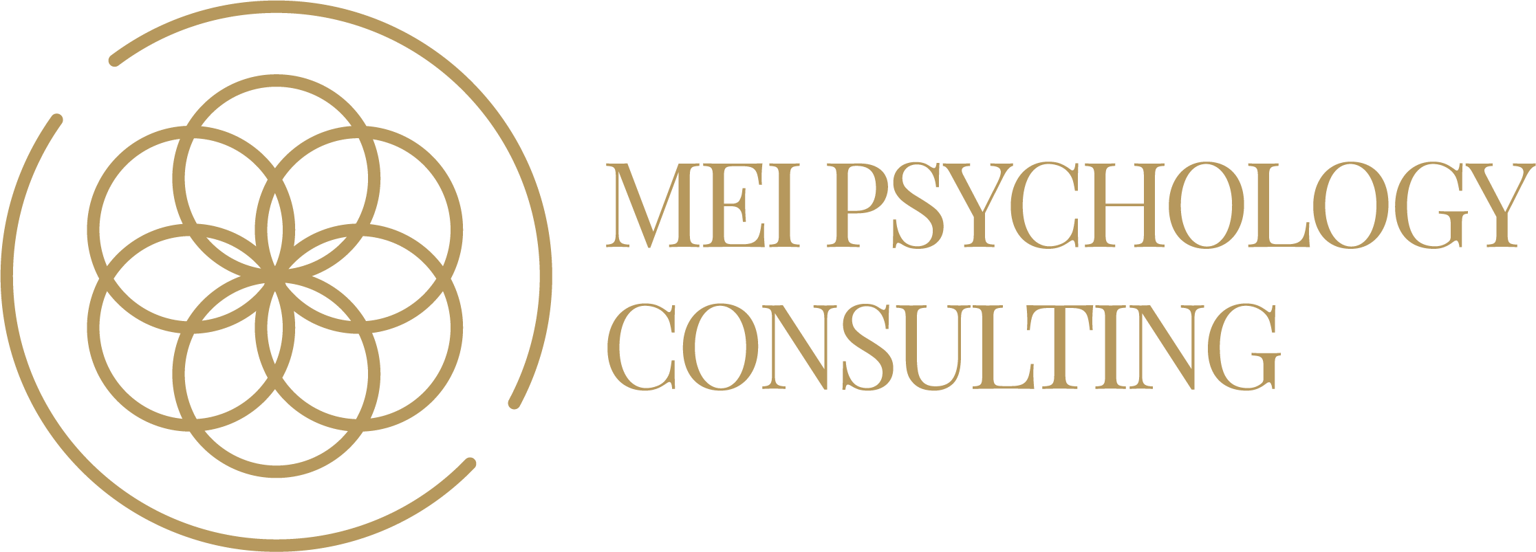 MEI Psychology Consulting